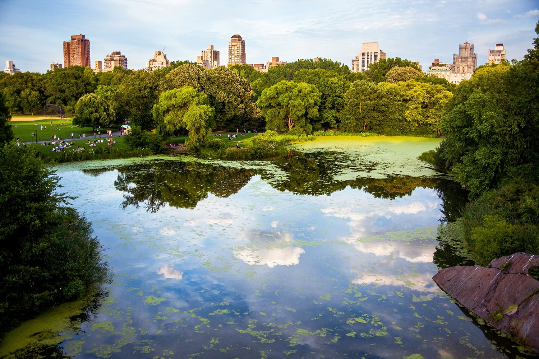 6 razones para viajar a Nueva York en familia