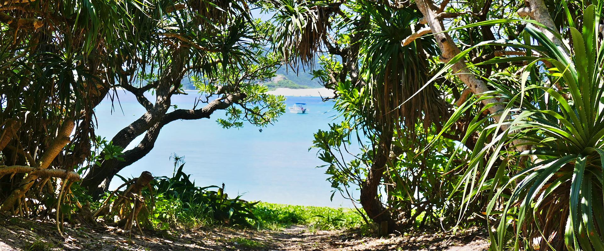 La isla de Zamami.