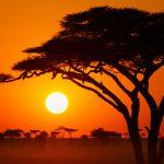 10 cosas que no sabías de África