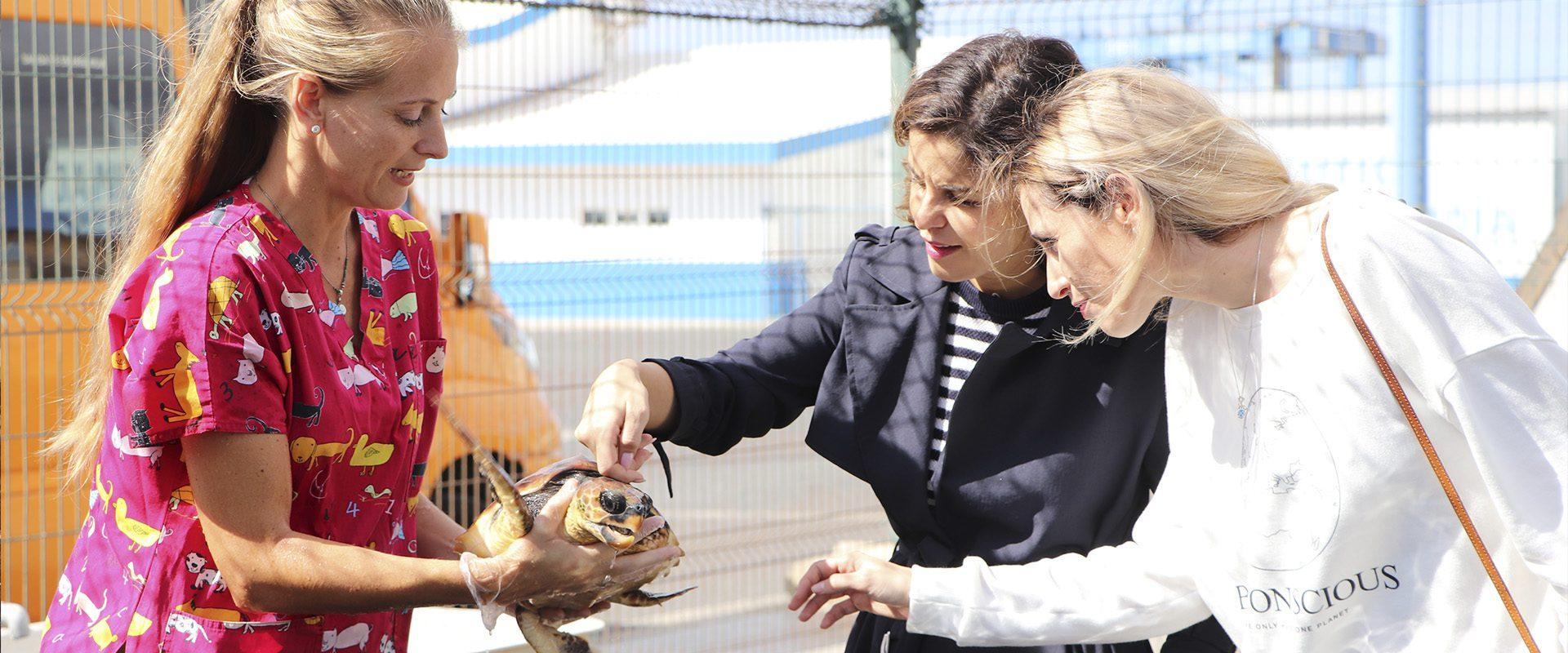 Viajeras con B Fuerteventura. Un viaje sostenible con Marta Torné.