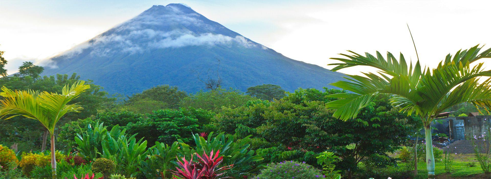 Postal desde Costa Rica: donde la vida silvestre y la naturaleza brillan con luz propia